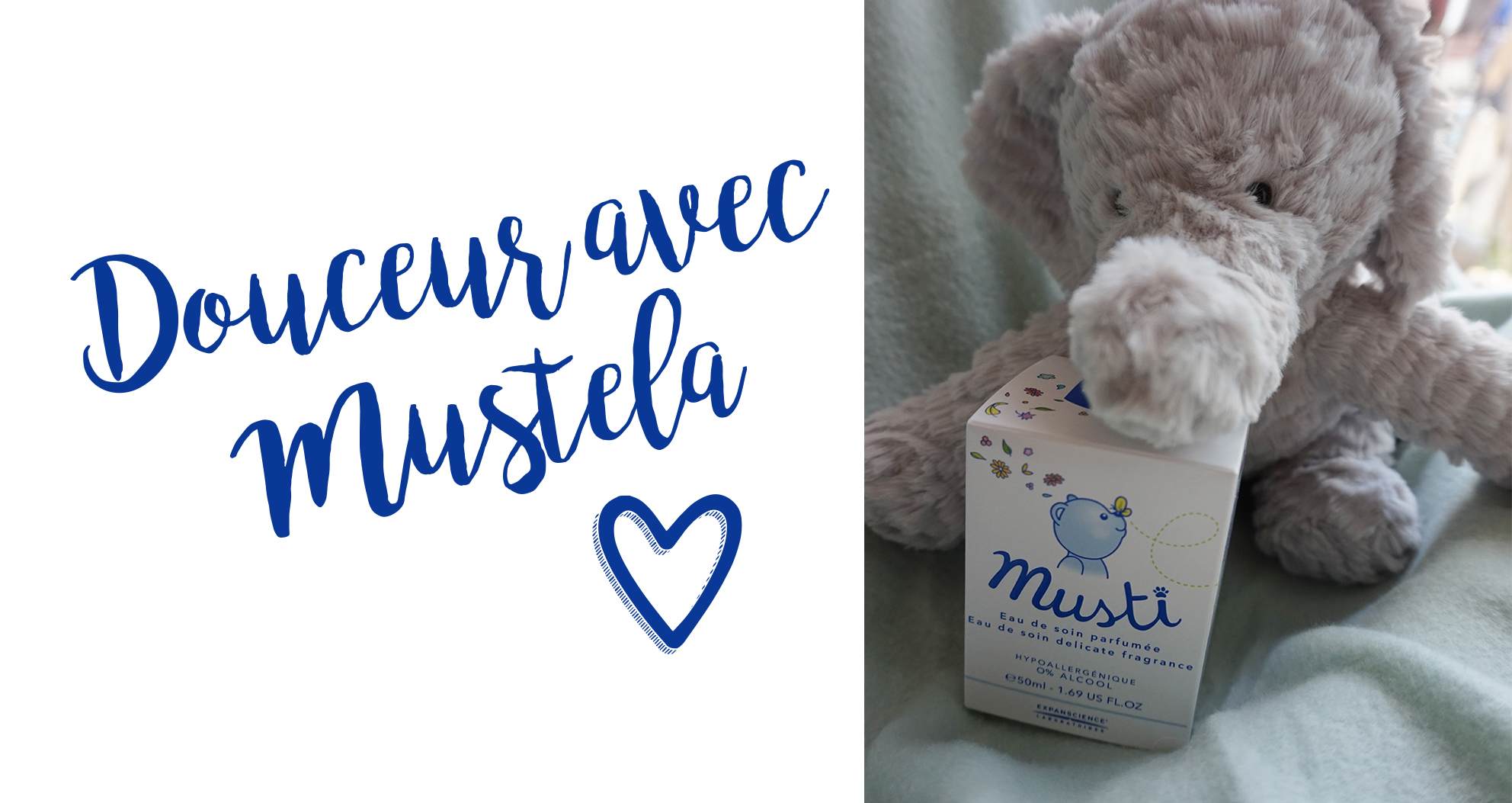 Mustela_1